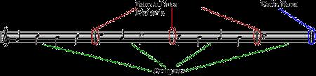 partes del compas